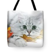 British Longhair Cat Tote Bag by Melanie Viola