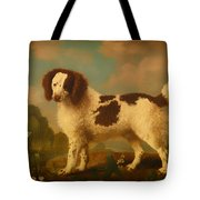 Brown And White Norfolk Or Water Spaniel Tote Bag