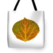 Brown Green Orange And Yellow Aspen Leaf 1 Tote Bag