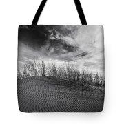 Bruneau Dunes State Park Idaho Tote Bag