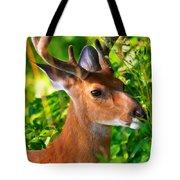 Buck In Velvet Tote Bag
