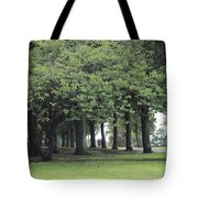 Buile Hill Park Tote Bag