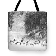 Bull Elk With Harem Tote Bag