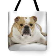 Bulldog, Female Tote Bag