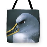 Bullers Albatross With Colorful Bill Tote Bag