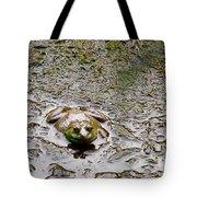 Bullfrog In The Mud Tote Bag