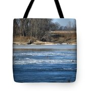 Bunches Of Eagles Tote Bag