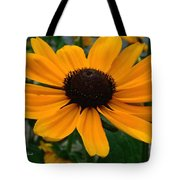 Butterscotch Daisy Tote Bag