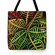 Cadiaeum Crotons Tropical Houseplant Shrub Tote Bag