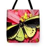 Cairns Birdwing Butterfly Tote Bag