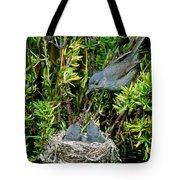 California Gnatcatcher Tote Bag
