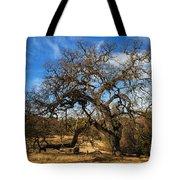 California White Oak Tote Bag