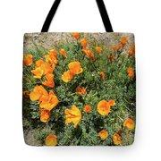 Californian Poppy Eschscholzia Tote Bag