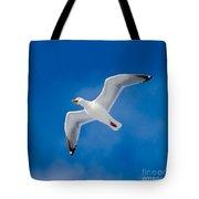 Calling Herring Gull Flying In Blue Sky Tote Bag
