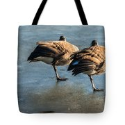 Canada Geese At Rest Tote Bag