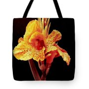 Canna Lilly In New Orleans Tote Bag