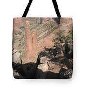 Canyon De Chelly Spider Rock Tote Bag