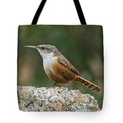 Canyon Wren Tote Bag