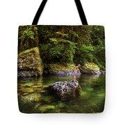 Cascade Locks, Oregon, Usa. A Woman Tote Bag