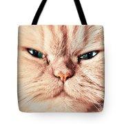 Cat Face Close Up Portrait Tote Bag