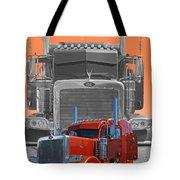 Catr3079a-13 Tote Bag