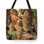Chardonnay Grapes In Vineyard, Carneros Tote Bag