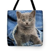 Chartreux Kitten Tote Bag