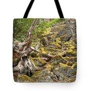 Cheakamus Rainforest Debris Tote Bag