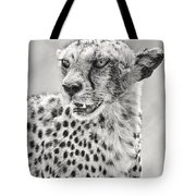 Cheetah Tote Bag by Adam Romanowicz