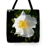 Cherokee Rose Tote Bag