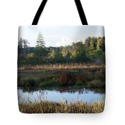 Chill In The Air Tote Bag