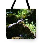 Chipmunk In The Sun Tote Bag