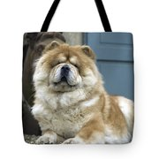 Chow Chow Dog Tote Bag