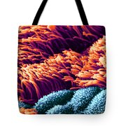 Cilia In Lung, Sem Tote Bag