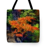 Clinging On Tote Bag