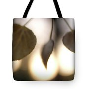 Close-up Of Aspen Leaves In Autumn Tote Bag