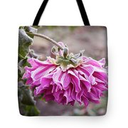 Close-up Of Flowers Covered By Frost Tote Bag