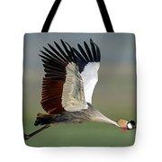 Close-up Of Grey Crowned Crane Tote Bag
