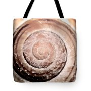 Close Up Of Sea Shell Tote Bag by Tommytechno Sweden