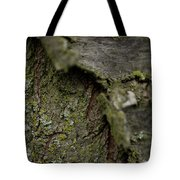 Closeup Of Bark Covered In Lichen Tote Bag