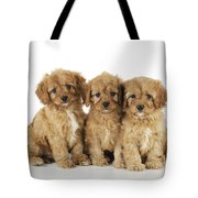 Cockapoo Puppy Dogs Tote Bag