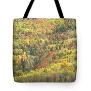 Colorful Autumn Forest In Mount Blue State Park Weld Maine Tote Bag
