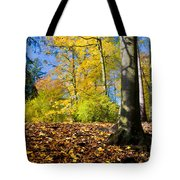 Colorful Fall Autumn Park Tote Bag