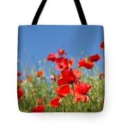 Common Poppy Flowers Tote Bag