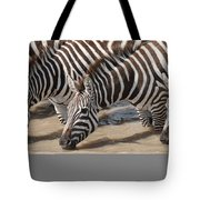 Common Zebras Drinking Water Tote Bag
