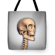 Conceptual Image Of Human Skull Tote Bag by Stocktrek Images