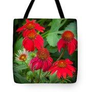 Coneflowers Echinacea Red  Tote Bag