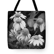 Coneflowers Echinacea Rudbeckia Bw Tote Bag by Rich Franco
