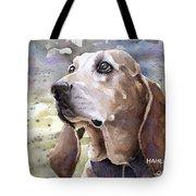 Coonhound - Pumpkin Tote Bag