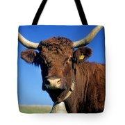 Cow Salers Tote Bag